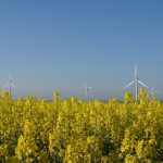 Biofuels Advantages and Disadvantages