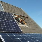 Sustainable Living – Apartment Dwellers Can Make Their Homes Green